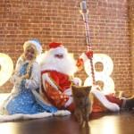 Дед Мороз и Снегурочка с желтой Собакой!!!